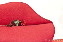 Speciale San Valentino: tutte le idee e i progetti creativi!