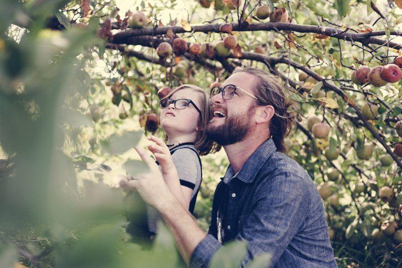 bambino e papa che guardano un albero da frutto