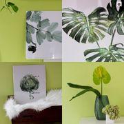 Novità in casa: più pareti verdi e decori naturali