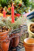La corona dell'avvento con candele e rami di cipresso